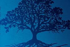 Illustration of a tree and its root system in blue silhouette