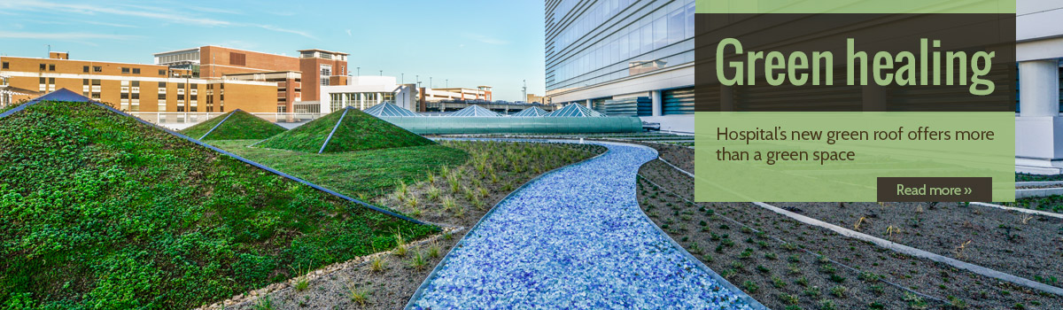 U.Va. Hospital green roof