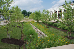 Stormwater Best Management Practices Environmental